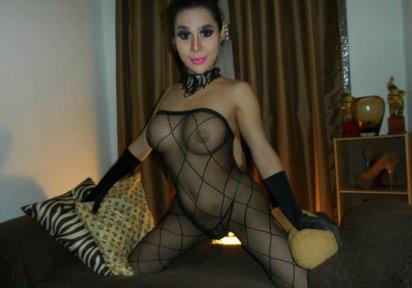Sexcam Livegirl LadyboyGeral